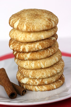 Gluten Free Snickerdoodle Cookie Mix *12 single packs