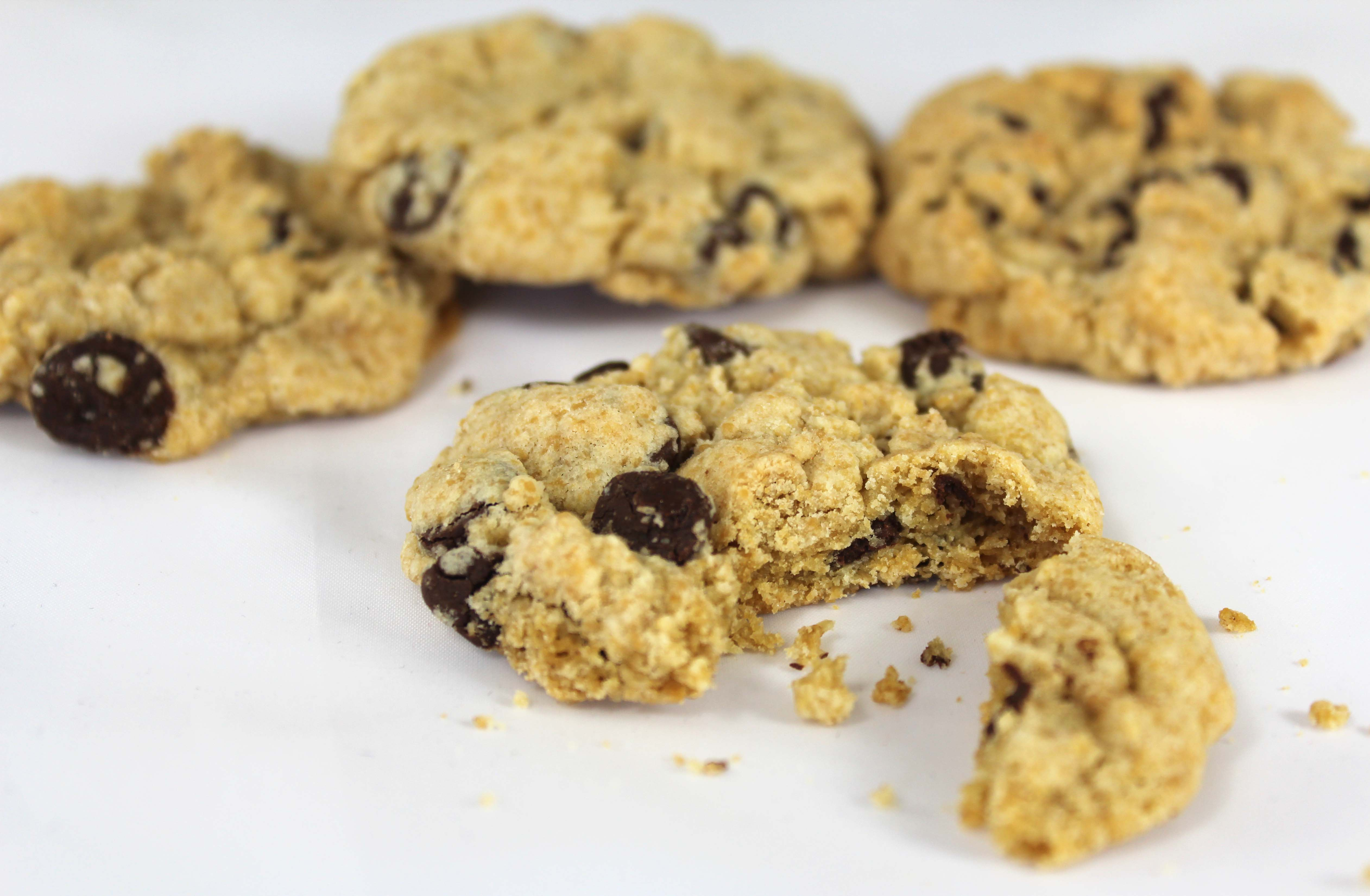 gluten-free-chocolate-chip-cookie