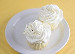 Vanilla Frosting Mix - *12 single packs